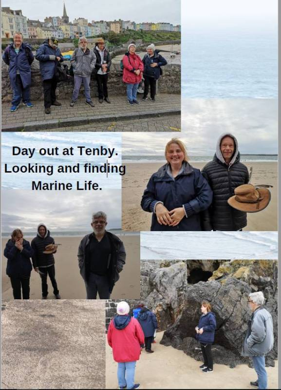 Day Out In Tenby October 2019